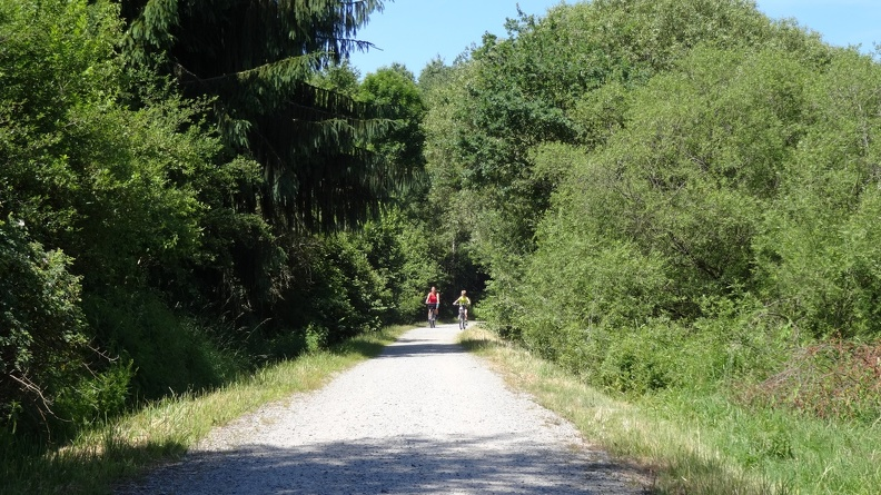 Regentalweg -- Schnitzmühle - Pulling und zurück